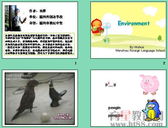 关于濒危动物的手抄报英语