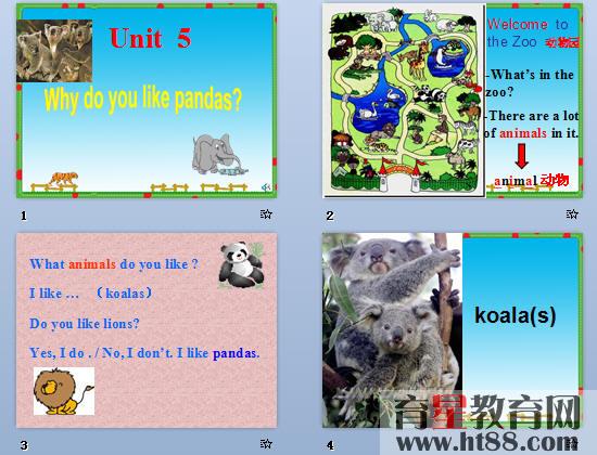 课件通过动物图片来讲授单词